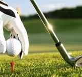 Sports & Activities